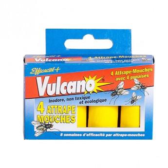 Vulcano Attrape Mouches